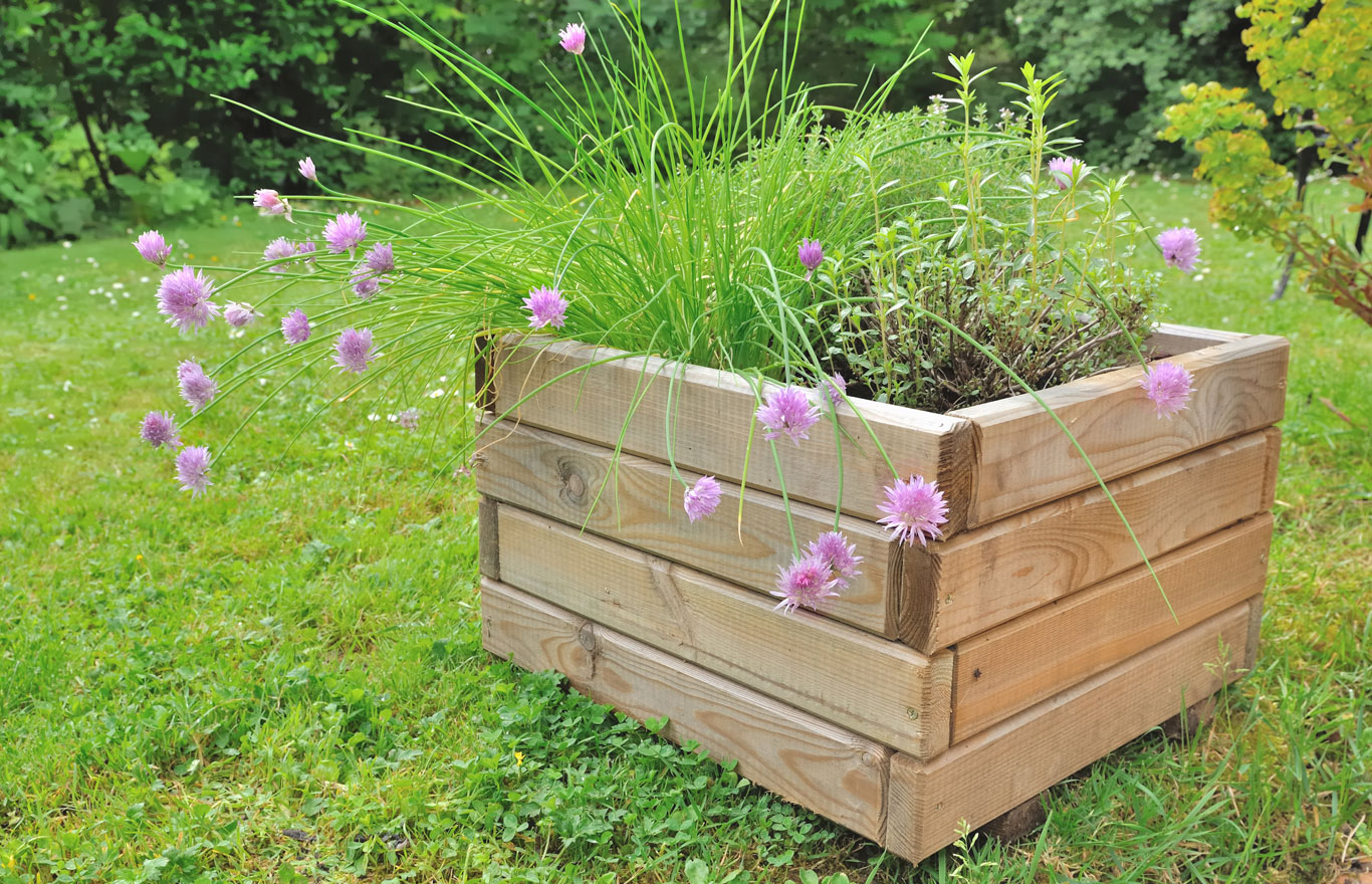 A Raised Planter in the Garden