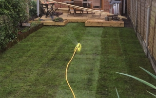 A new lawn layed